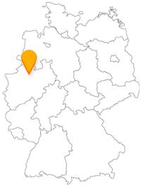 Der Fernbus in Münster