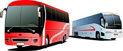 libéralisation des bus 6 mois après