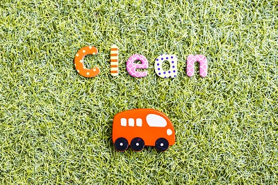 Bus im Gras