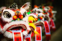 Entweder eine Reise mit dem Fernbus zum nächstliegenden Frühlingsfest oder ein Flug direkt nach China, um den Löwentanz zu sehen.