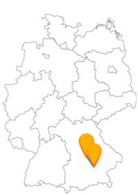 Sie reisen mit dem Fernbus Ingolstadt München Flughafen in die Nähe der Stadt Freising und zum Medizinhistorischen Museum.