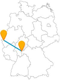 Rundgang drinnen oder draußen? Auf der Fernbusreise zwischen Aachen und Aschaffenburg geht das entweder in Museen oder im Stadtwald.
