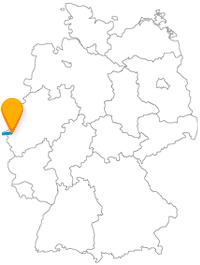 Die Reise mit dem Fernbus von Aachen nach Brüssel führt in den Mikrokosmos.