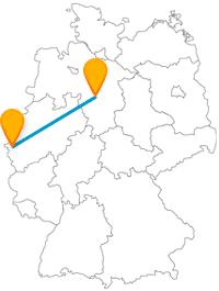 Entweder Flora und Fauna oder sakrales Flair, die Reise mit dem Fernbus zwischen Aachen und Hannover bietet beides.