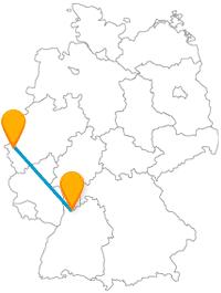 Die Fahrt mit dem Fernbus von Aachen nach Heidelberg bringt Sie von quirligen Tieren zu einer Ruine.