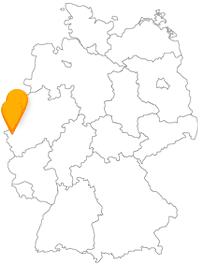 Ob mit geführter Route oder eigeninitiativ, lassen Sie bei Ihrer Fahrt im Fernbus zwischen Aachen und Krefeld keine Sehenswürdigkeit aus.