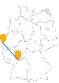 Stärken Sie sich auf Ihrer Fernbusreise von Aachen nach Mannheim in luftiger Höhe.
