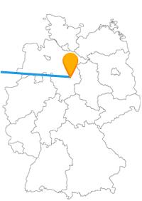 Eine Reise im Fernbus zwischen Amsterdam und Braunschweig lohnt sich zu jeder Jahrezeit.