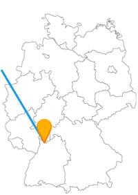 Die Fernbusreise von Amsterdam nach Heidelberg bringt Sie von einer Hafen- in eine Studentenstadt.