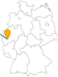 Die Reise mit dem Fernbus Amsterdam Köln eignet sich wunderbar zum Flanieren.