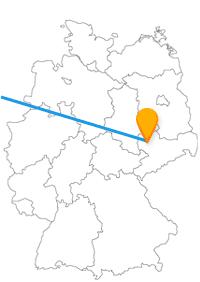 Der Fernbus zwischen Amsterdam und Leipzig bringt Sie in beide Richtungen zu einem Zoo.