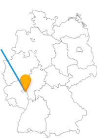 Der Fernbus zwischen Amsterdam und Mainz verbindet Weltliches mit Geistlichem.