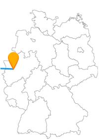 Lassen Sie sich auf der Reise mit dem Fernbus zwischen Antwerpen und Düsseldorf auf verschiedene Arten überraschen.