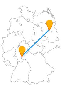 Ob Burg, ob Zoo, mit dem Fernbus zwischen Aschaffenburg und Berlin können Sie unterschiedliche Ziele ansteuern.