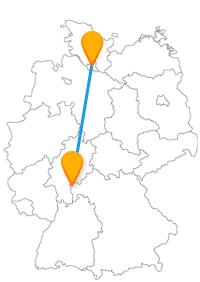 Lernen Sie mit der Fahrt im Fernbus Aschaffenburg Hamburg einen historischen Löwen und eine Mini-Landschaft kennen.