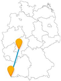 Schwimmen Sie im Rhein oder erleben Sie Großstadtflair nach der Reise mit dem Fernbus zwischen Basel und Frankfurt.