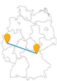 Der Fernbus von Bayreuth nach Köln führt Sie zum Röhrensee und zum Duftmuseum Farina-Haus.