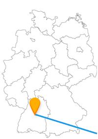 Genießen Sie nach der Fahrt im Fernbus zwischen Belgrad und Stuttgart bei verschiedenen Spaziergängen Natur und frische Luft.