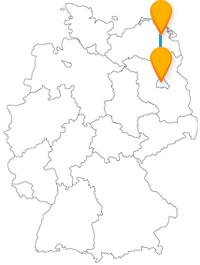 Die Reise mit dem Fernbus von Berlin nach Greifswald verbindet Gartenschau mit großer Vielfalt an Tieren.