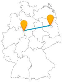 Entdecken Sie auf Ihrer Reise im Fernbus zwischen Berlin und Hameln nicht nur die Spur des Rattenfängers, sondern auch viele interessante andere Tiere.