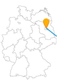 Entdecken Sie nach der Fahrt im Fernbus Berlin und Lviv als vielseitige Städte.