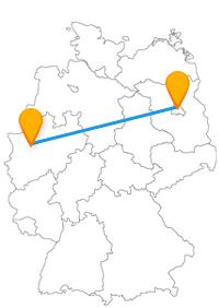 Entdecken Sie mit dem Fernbus Berlin Mülheim entweder sehr viel Grün oder ein buntes Nachtleben.
