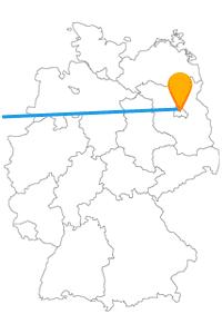 Auf der Reise mit dem Fernbus zwischen Berlin und Rotterdam wird es garantiert abwechslungsreich.