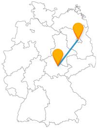 Die Reise mit dem Fernbus von Berlin nach Weimar verbindet Gartenschau mit großer Vielfalt an Tieren.