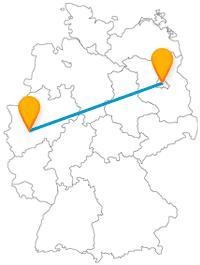 Auf Ihrer Fernbusreise zwischen Berlin und Wuppertal können Sie den Anblick von Schlössern, Tier- und Parkanlagen genießen.