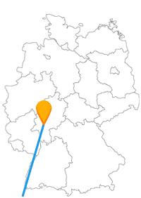 Vielleicht ist nach der Fahrt im Fernbus Bern Frankfurt der Bär los.