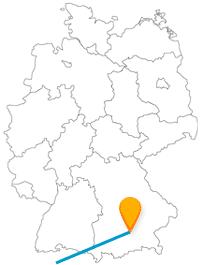 Fahren Sie für ein gutes Bier mit dem Fernbus von Bern nach München oder erleben umgekehrt echte Bären.