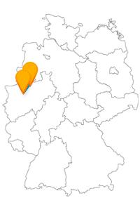 Der Fernbus zwischen Bochum und Münster bringt Sie zu vielen Sehenswürdigkeiten, zu kulturellem Angebot und in die Natur.