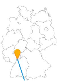 Der Fernbus zwischen Bologna und Mannheim lässt Sie hoffenlich nicht doppelt sehen.