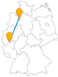 Wandeln Sie mit dem Fernbus zwischen Bonn und Bremen auf den Spuren von vier Musikanten und entlang einer Museumsmeile.