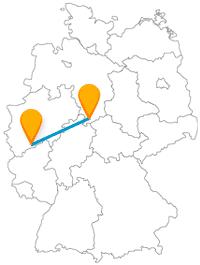 Tiere erforschen oder doch lieber küssen? Finden Sie es auf der Reise mit dem Fernbus zwischen Bonn und Göttingen selbst heraus.