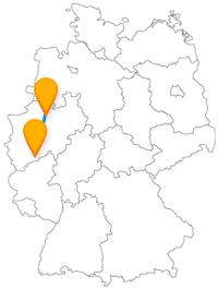 Nach der Reise mit dem Fernbus von Bonn nach Münster können Sie sich an einem See mitten in der Stadt erholen.