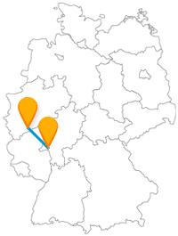 Machen Sie mit dem Fernbus zwischen Bonn und Wiesbaden eine Rathaus-Tour.