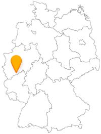 Der Bus Bonn ist gut in den Nahverkehr integriert.