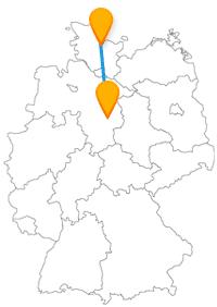 Ob Löwe und Dom oder Wasser und Fische, der Fernbus zwischen Braunschweig und Kiel verbindet Kontraste.