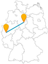 Ob Burg, ob Dom, ob naturhistorisches Musem, die Fahrt im Fernbus zwischen Braunschweig und Köln ist abwechslungsreich.