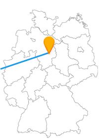 Lernen Sie mit der Reise im Fernbus zwischen Braunschweig und Paris neben den berühmten Attraktionen auch andere Sehenswürdigkeiten kennen.