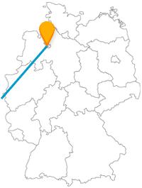 Machen Sie jeweils nach Ihrer Reise mit dem Fernbus zwischen Bremen nach Brüssel einen gemütlichen Parkspaziergang.