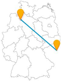 Treffen Sie bei Ihrer Fernbusreise zwischen Bremen und Prag auf Stadtmusikanten und andere viele Tiere.