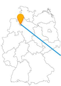 Die Reise mit dem Fernbus von Bremen nach Wien ist lang, aber lohnenswert.