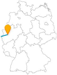 Die Reise mit dem Fernbus von Brüssel nach Düsseldorf ist sowohl für Frauen als auch für Männer interessant.