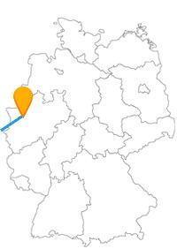 Sind die Sehenswürdigkeiten nach der Fahrt im Fernbus zwischen Brüssel und Duisburg wirklich so imposant wie sie klingen?