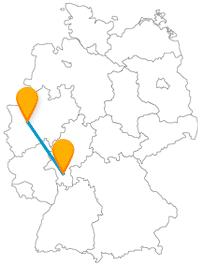 Natur und Tiere können Sie nach der Reise mit dem Fernbus zwischen Darmstadt und Düsseldorf erleben.
