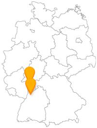 Ob ehemalige Wasserburg oder Philosophenweg, die Fernbusreise zwischen Darmstadt und Heidelberg ist eine kleine Entdeckungstour.