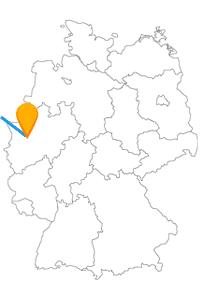 Erleben Sie auf Ihrer Reise mit dem Fernbus zwischen Den Haag und Düsseldorf interessante Kontraste.