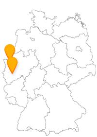 Mit dem Fernbus Dinslaken Köln haben Sie meist über Duisburg und Leverkusen günstige Busfahrten.